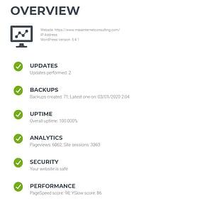 Website Care Report Screenshot